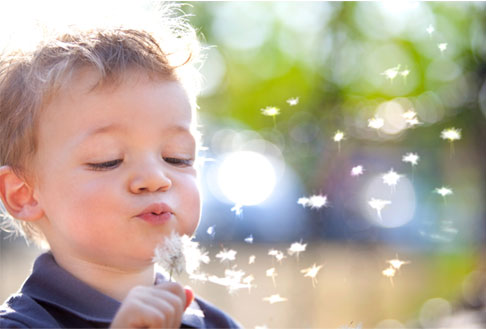 Image of child blowing on dandelion